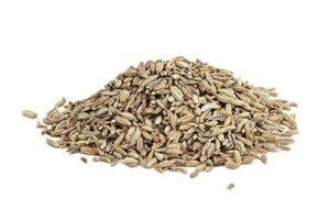 זרעי שומר