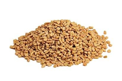 זרעי חילבה