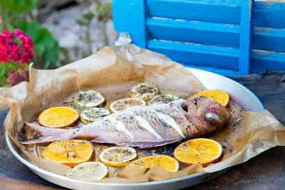 דג בתערובת אנטי פסטי והדרים